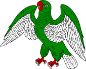 Parrot Rising