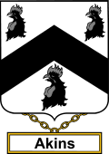 English Coat of Arms Shield Badge for Akins or Aiken