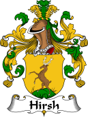 German Wappen Coat of Arms for Hirsh