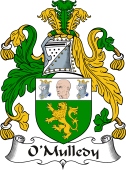 Irish Coat of Arms for O'Mulledy or O'Neady