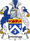 Irish Coat of Arms for Jennings or Jennyns