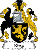 Irish Coat of Arms for King