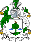 Irish Coat of Arms for O'Concannon